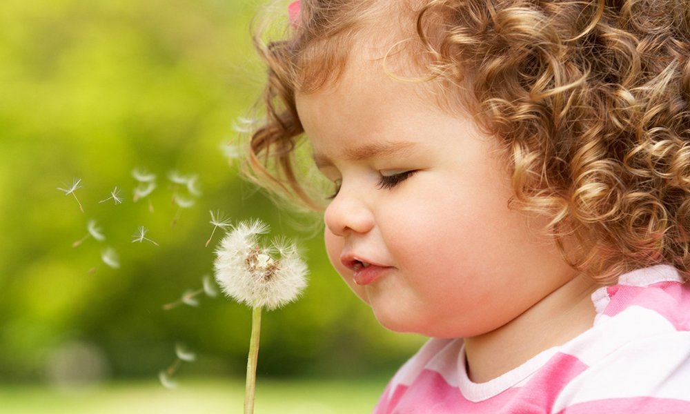Toddler blowing a dandelion